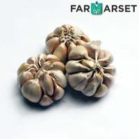 [BANDUNG ONLY] Bawang Putih 250gr