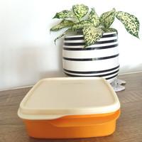 Tupperware Kotak Makan Bersekat Lolly Tup 550ml Orange