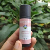 Lip Balm Stick Strawberry Peppermint Chocolate GMS 5 ml - Straw Peppermin