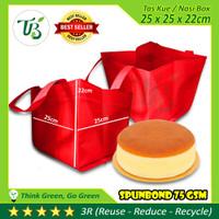 GOODIE BAG TBI -BOX CAKE- TAS KUE SPUNBOND 25x25x25 cm BUKAN PAPER BAG