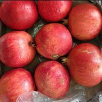 buah delima mesir jumbo 1dus