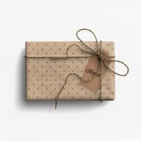 Paket Kertas Kado & Tag Harvest Eco-Friendly Gift Set - Polkadot