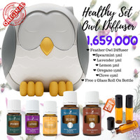 Feather owl diffuser young living essential oil healthy set SALE