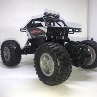 Mainan remote control Rock Crawler mobil Offroad good suspension 1:14