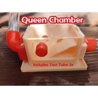 Queen Chamber Formicarium