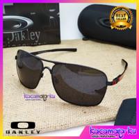 Kacamata Sunglasses Pria Polaroid Plaintif Premium