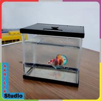 Aquarium mini akrilik custom lis hitam PxLxT15x11x14