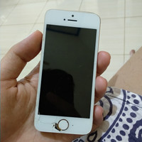 iPhone 5s gold 32gb minus