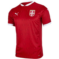 Fake Jersey Serbia Home 2020 Dry Cell