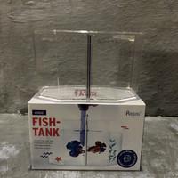 Mini aquarium ikan cupang unik