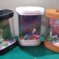 Aquarium Mini, Unik dan Mewah