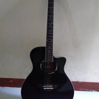 guitar akustik yamaha apx 500