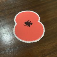 Original 2020 - 21 Poppy Liga Inggris EEPPLL patch badges no jersey