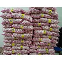 Bawang Putih Kating Import Karung/Ball - 10kg