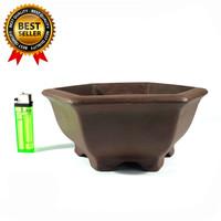 Pot Bonsai Model Keramik Segi Enam Untuk Bonsai Mame Small