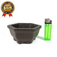 Pot Bonsai Untuk Mame dan Small Model Segi Enam Kualitas Terbaik