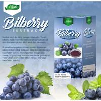 Bilberry Ekstrak Syifa 60 kspl   Menjaga Kesehatan Mata