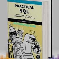 buku practical sql