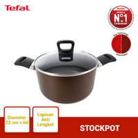 Tefal Day by Day Stockpot 22cm+ lid