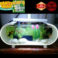 aquarium mini aquarium ikan cupang aquarium unik/aquarium hias