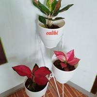 Standing pot /Rak tanaman Besi Tinggi 80cm