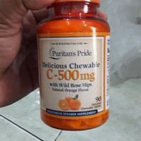 Puritan Pride Vitamin C 500 mg with Rose Hips 100 Caps Puritans