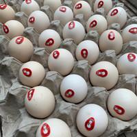 Telur Ayam Kampung Omega isi 30