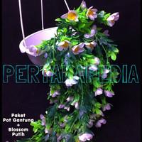 Bunga Plastik/ Daun Rambat/ Rumput Plastik/ Busa Bunga/ Blossom PG