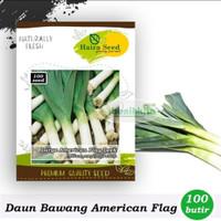 Benih-bibit Daun Bawang American Flag Large