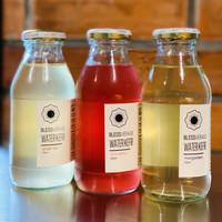 Water Kefir - Jus Probiotik - Premium - Organik - Bebas Pestisida