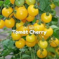 ( 6 Butir ) Benih Tomat Cherry Kuning