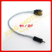 Kabel RCA Cabang 2 In 1 (1F/2M dan 1M/2F) Intersys