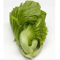 sayur sawi pahit 500 gram