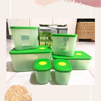 tupperware fresh mint collection