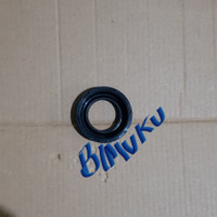 Seal Flange Excentric BMW N52 11127559699