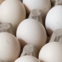 Telur Ayam Kampung Asli