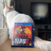kaset ps4 red dead redemption 2 RDR 2 used mint condition