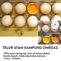 TELUR AYAM KAMPUNG OMEGA3