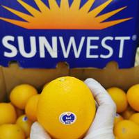 buah jeruk sunkist navel USA AUS manis banyak air