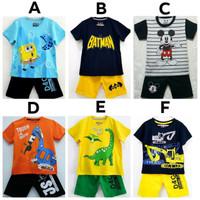 SETELAN Anak Cowok motif karakter size 1-6 (1-6 tahun)