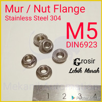 Mur Flange M5 SUS304