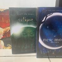 novel twilight saga