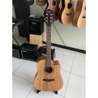 New Camwood IWC-243 NSK Guitar original