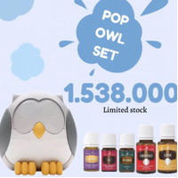 Feather the owl diffuser free 5eo young living / pop owl set