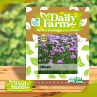 Daily Farm - Benih Bibit Chives - Daun Bawang Kucai