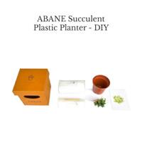 ABANE Succulent Plastic Planter - DIY