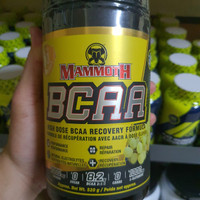 Mammoth Bcaa 40serv