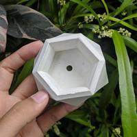 Pot Semen / Concrete / Cement Sukulen Kaktus Mini - hexagonal