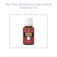 Tea tree Essential oil YLO original