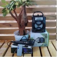 Speaker Portable FLECO F 2924 Free Mic - Speaker Bluetooth Fleco 2924